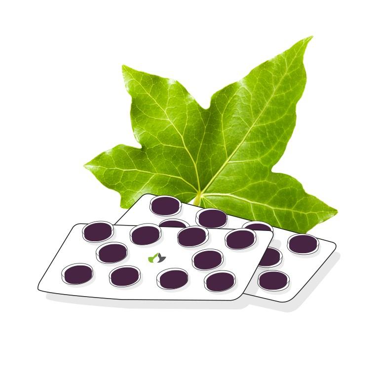 Ivy leaf oral gum