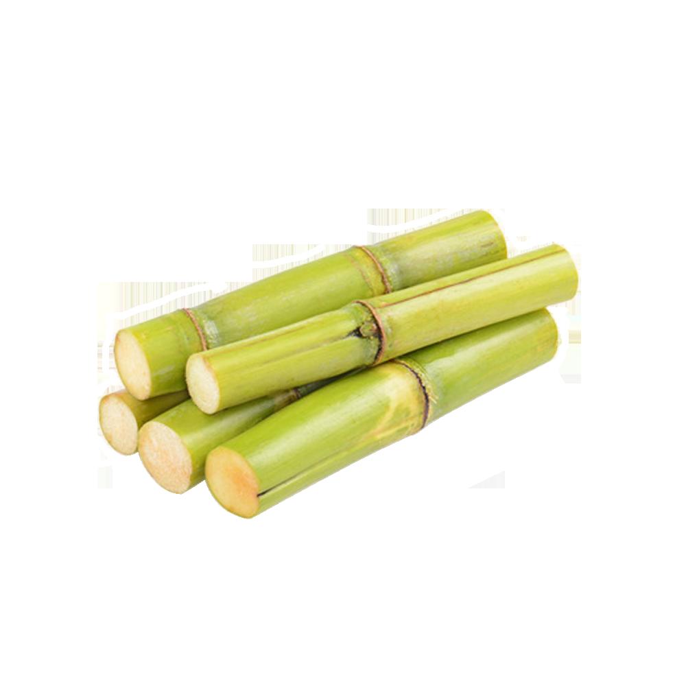 Sugarcane Wax Extract