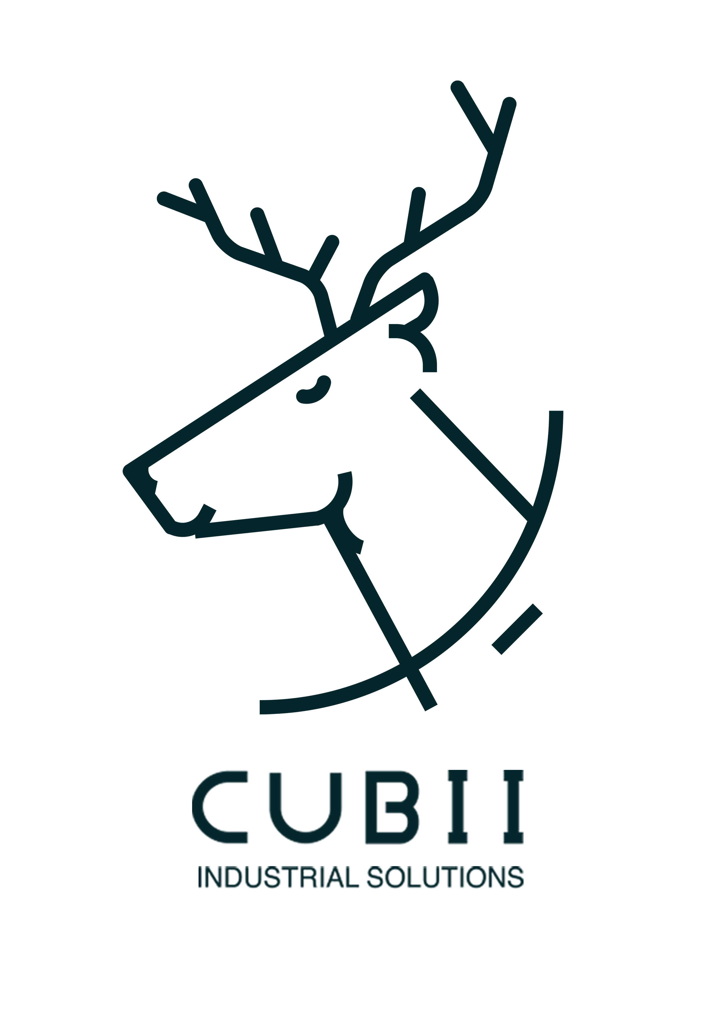 CUBII Industrial Solutions